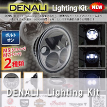 DENALI Lighting Kit